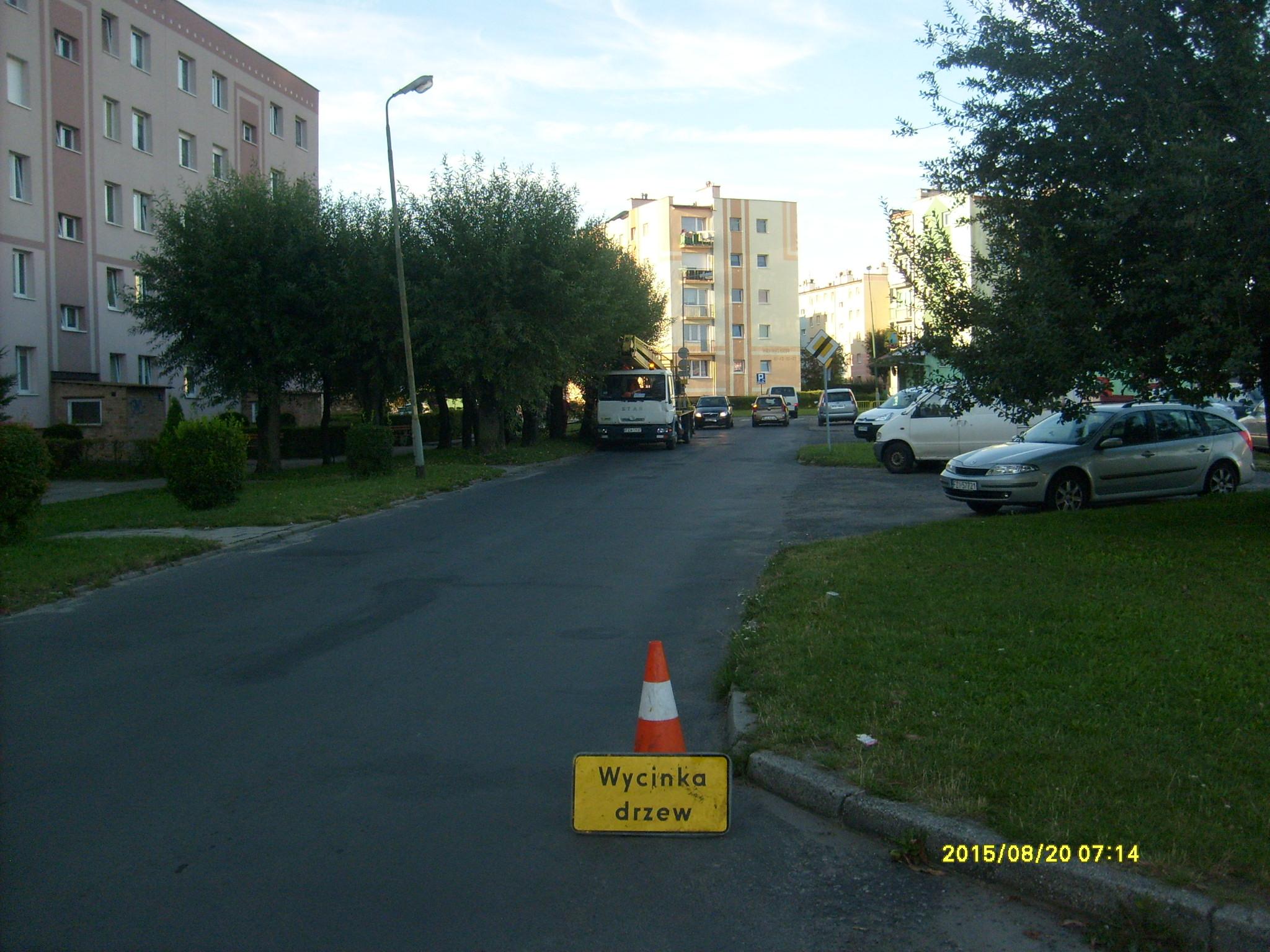 Ilustracja do informacji: Przycinka drzew na ulicy Paderewskiego