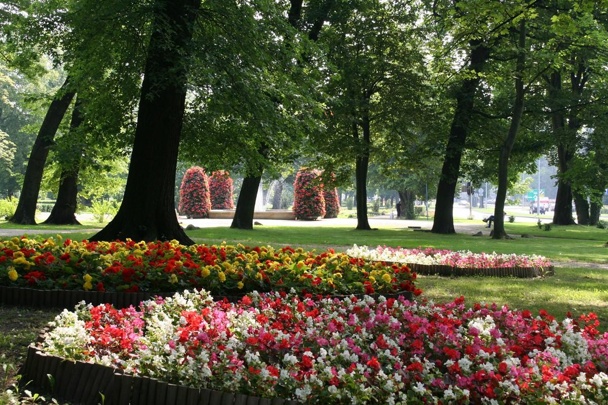 Ilustracja do informacji: Park przy al.Jana Pawła II