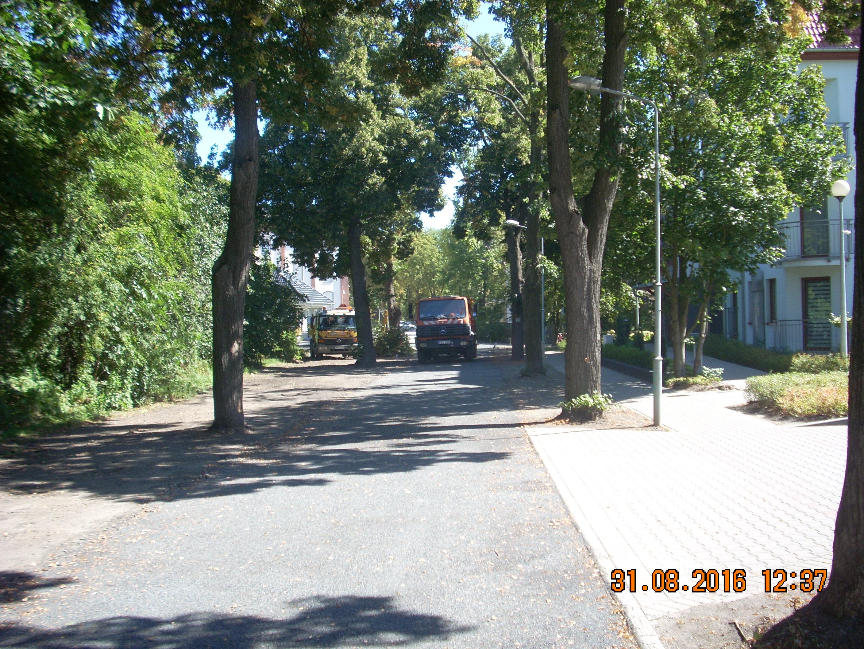 Ilustracja do informacji: Trwają prace na ulicy Spokojnej w Żarach