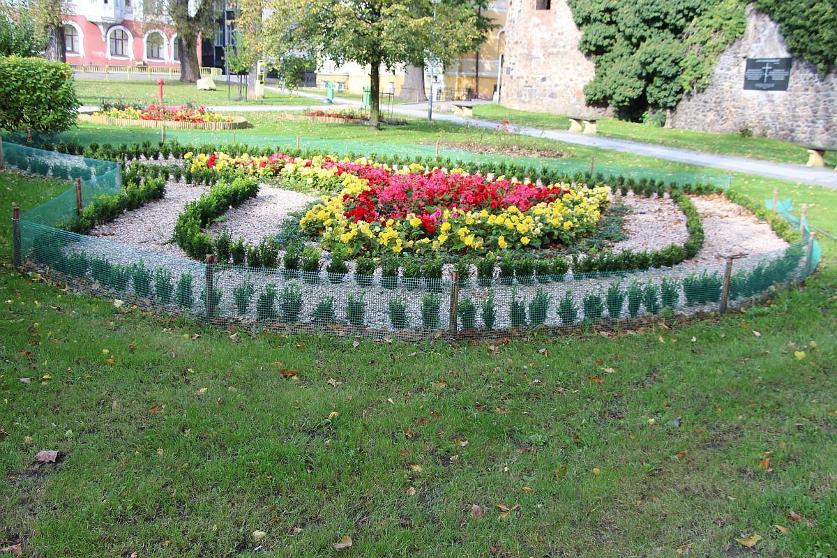 Ilustracja do informacji: Jesień w pełni, a w Żarach wciąż zielono:)