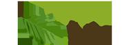 Baner: Zielony Las