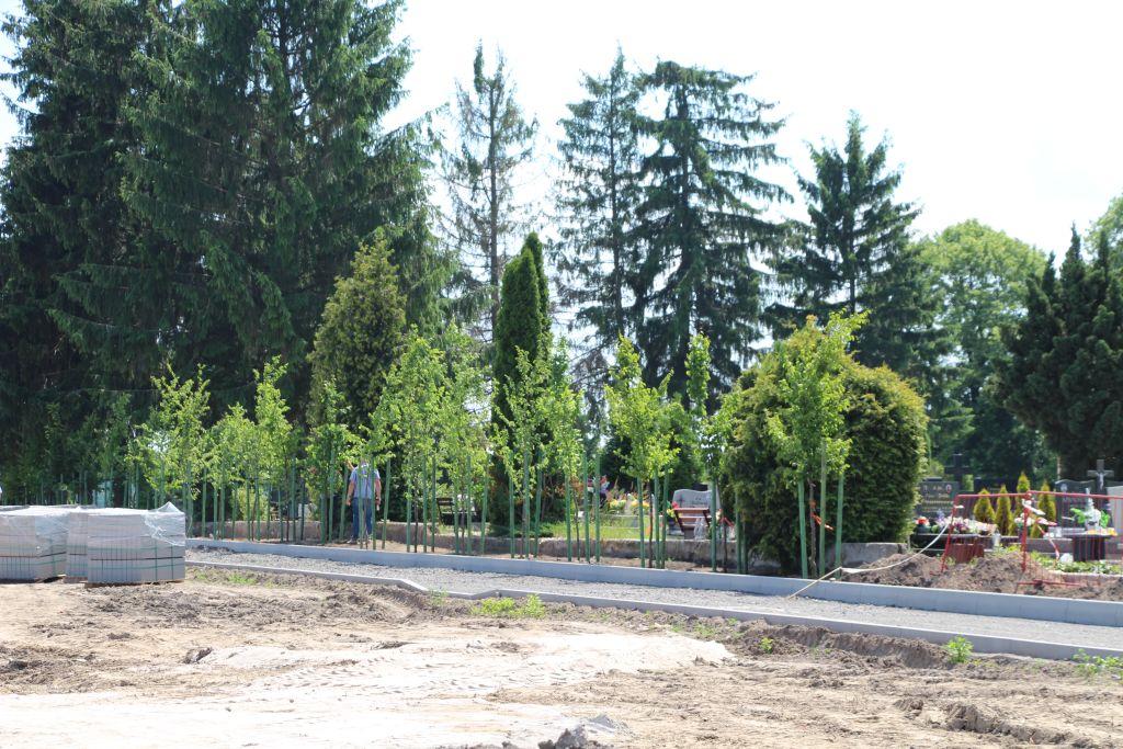 Ilustracja do informacji: Zagospodarowanie kwater na istniejącym cmentarzu komunalnym przy ul. Szpitalnej w Żarach – etap I.