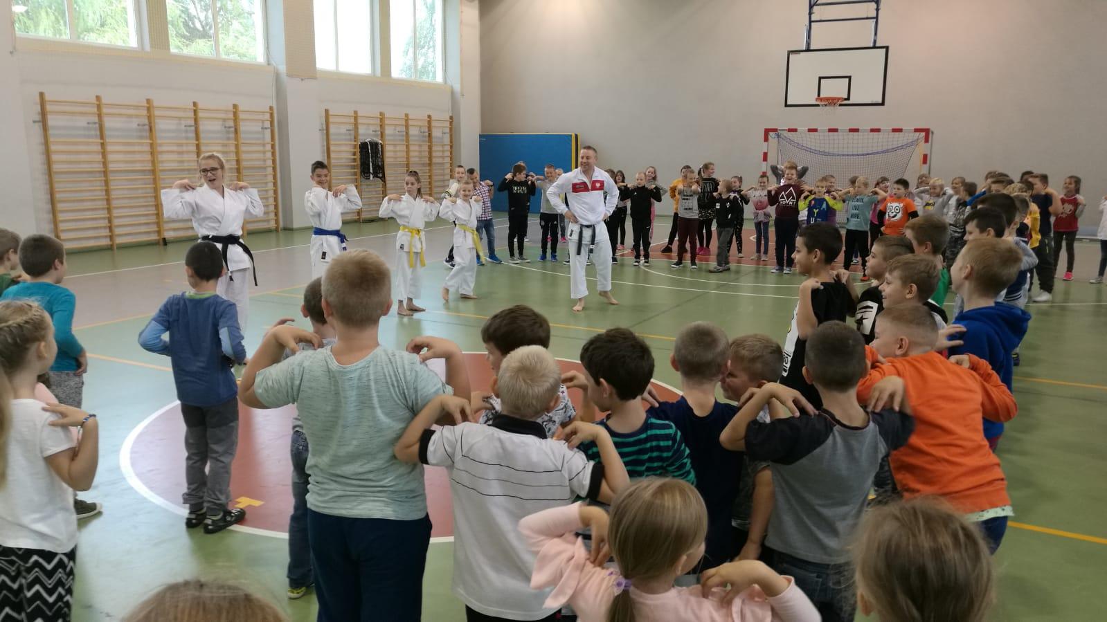 Ilustracja do informacji: Dzień chłopaka a karate