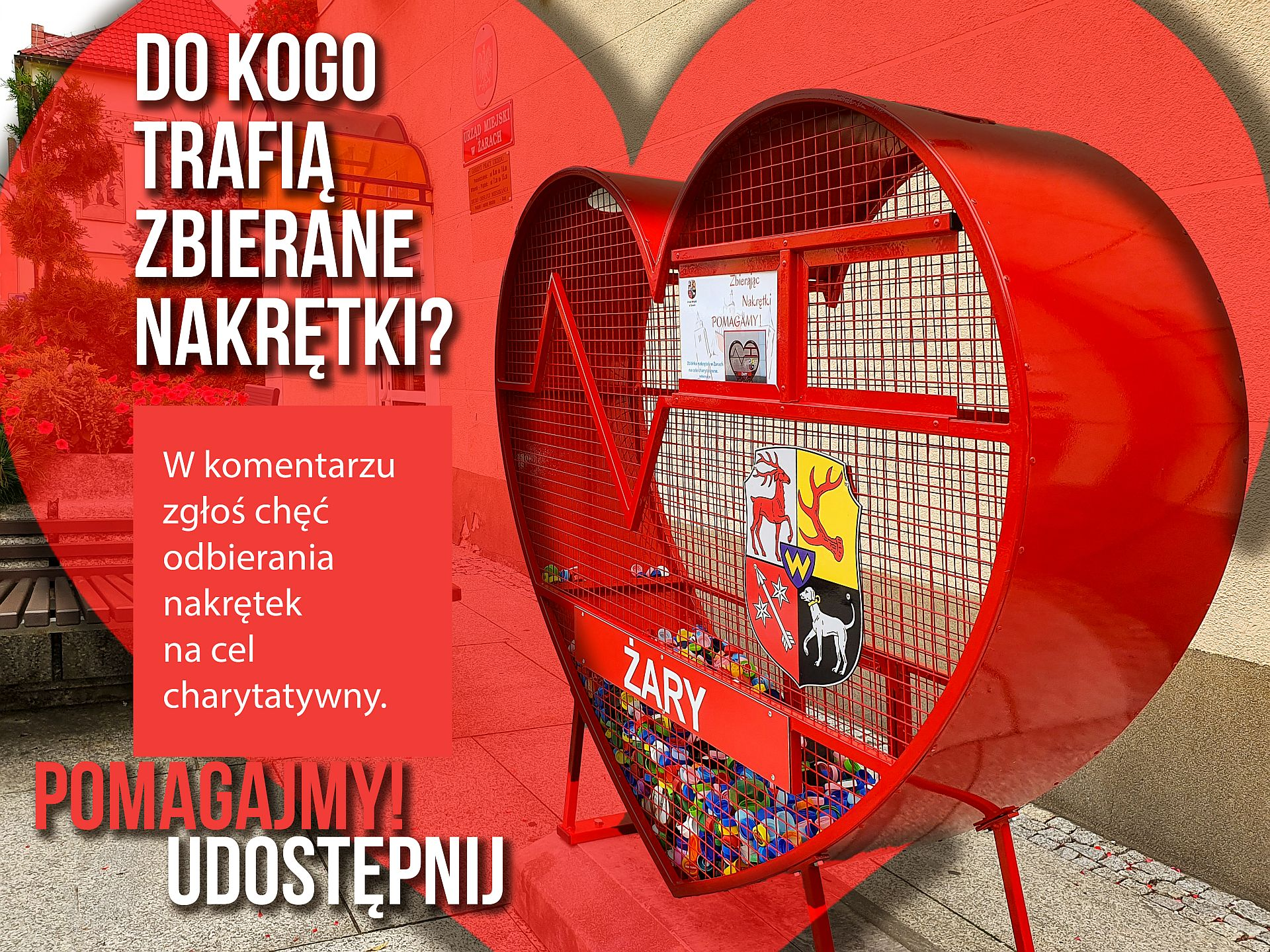 Ilustracja do informacji: Żary pomagają!!!