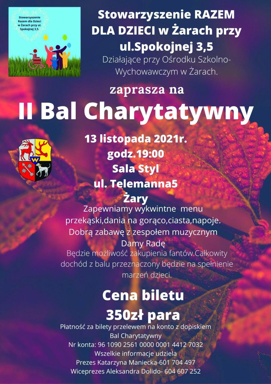 Ilustracja do informacji: II Bal Charytatywny